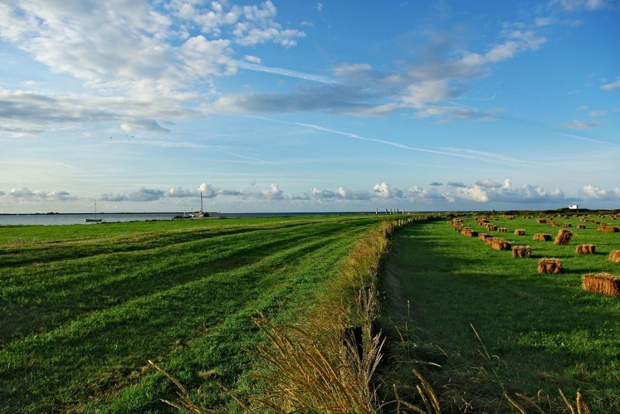 DL0DFF Hallig Hooge Island