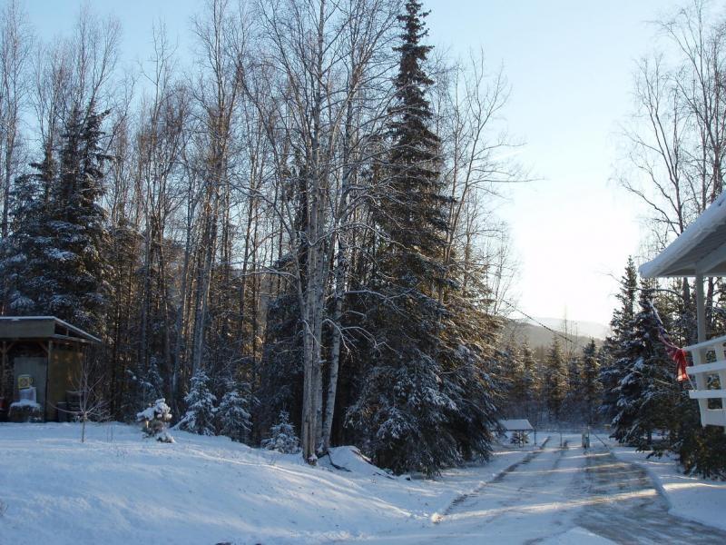 KL4NU Chugiak, Alaska. Stealth Loop antenna