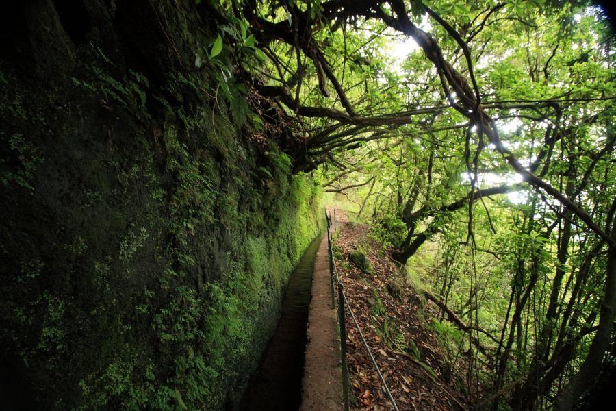 CT9/OM2KW Madeira Island