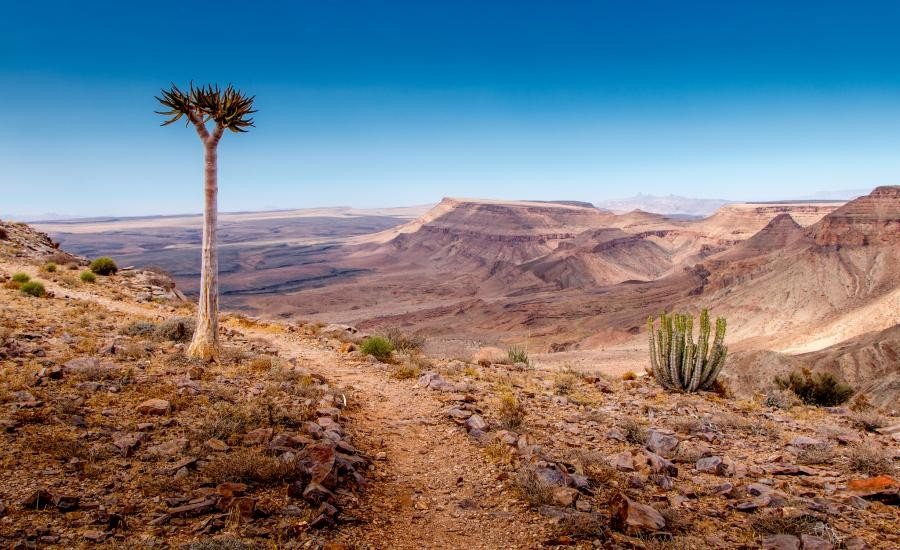 V5/ZS1WO Namibia