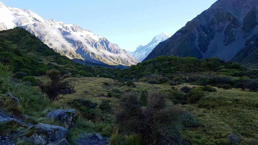 ZL/DJ8XW New Zealand