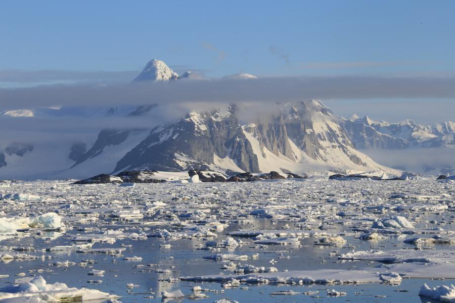 RI1ANX Antarctica