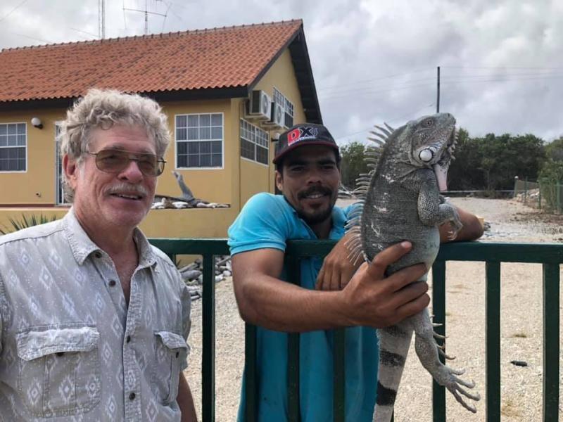PJ4G Bonaire Island Iguana Image 2