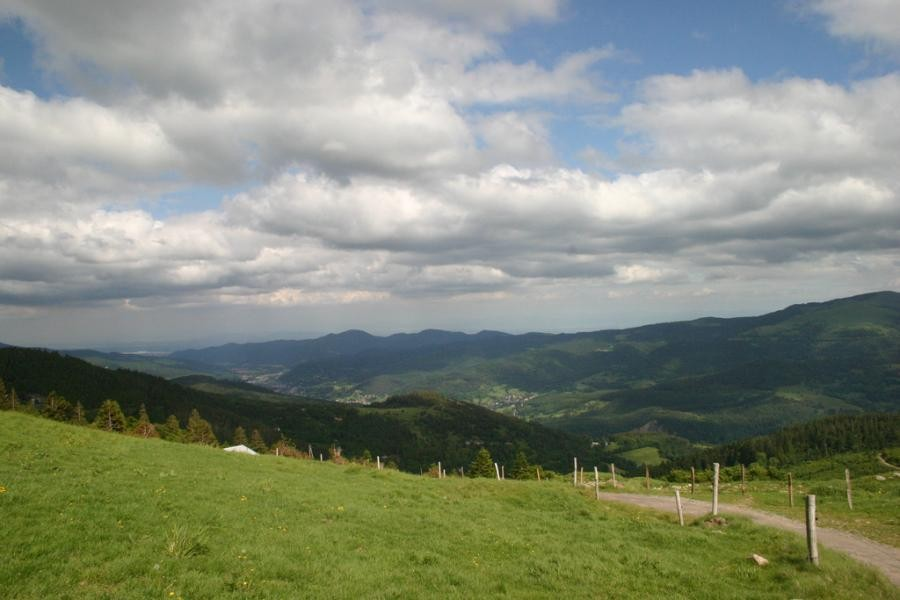 TM7BC Vosges Mountains, France