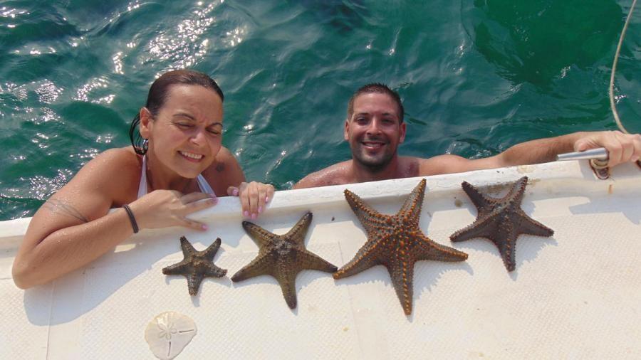 C91AHV Diving, Mozambique Star Fish
