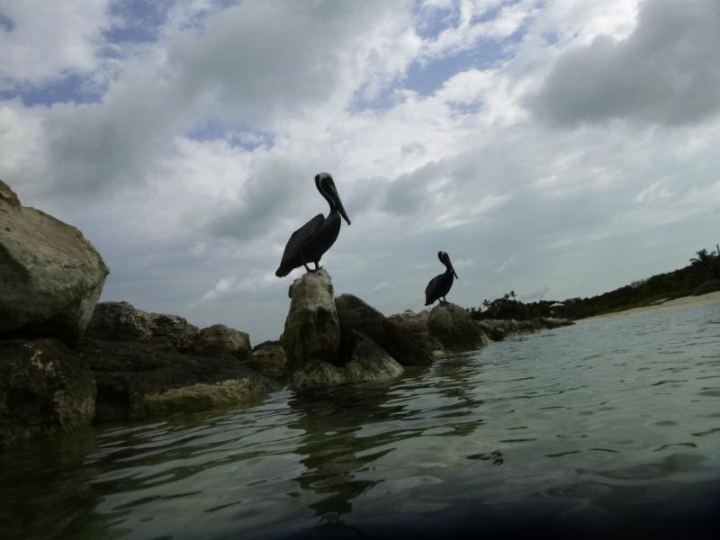 VP5/W3PYF Turks and Caicos Islands