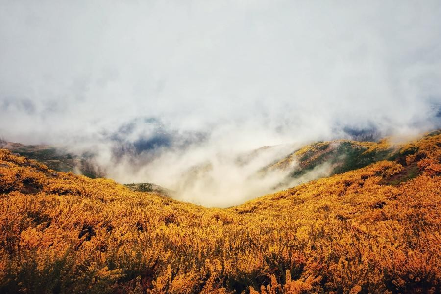 CT9/DL1ASA/P Madeira Island