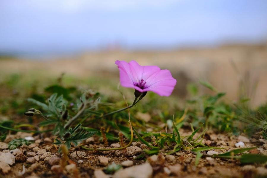 5B/OK7JR/P Cyprus Island