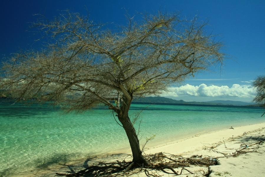 YC9MLL Kanawa Island, Flores, Nusa Tenggara Timur, Indonesia.