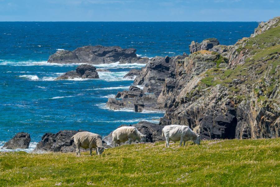 MM0GHM/P MM0GHM/M Lewis Island, Scotland