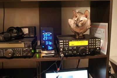 RD4A Alexander Fedotov, Volgograd, Russia. Radio Room Shack