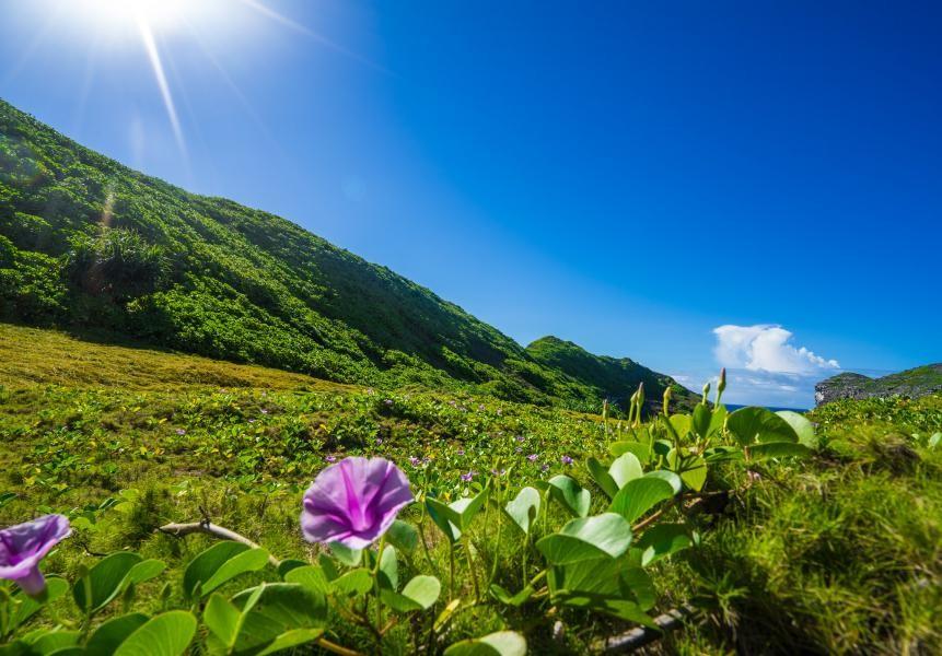 Ogasawara Islands, JD1BPK JD1BPL, JD1BMG