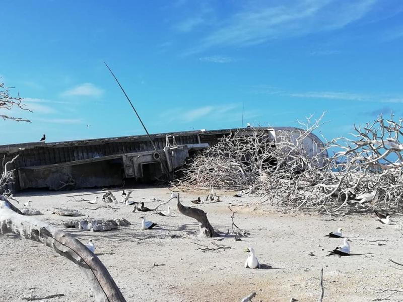 Conway Reef 3D2CR DX Pedition Image 9