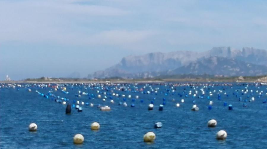 IZ1IIH/IS0 Olbia, Costa Smeralda, Sardinia Island