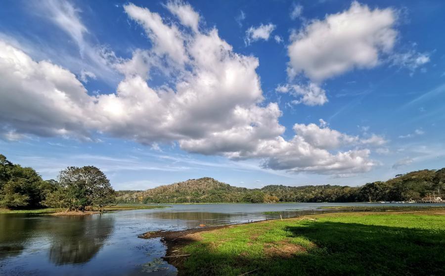 H92L Chagres river, Gamboa, Colon, Panama