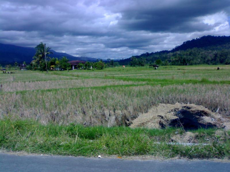 8C74PSM Lubuk Sikaping, Indonesia