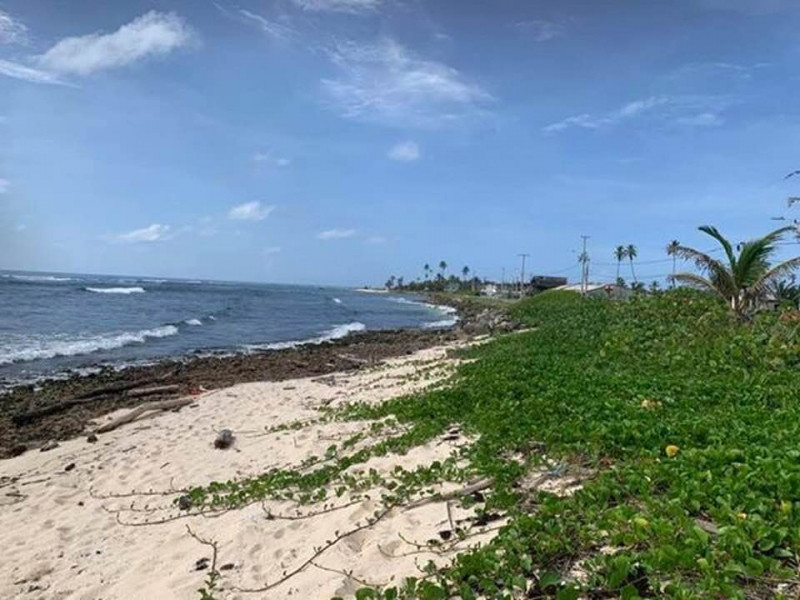 5K0K San Andres Island 20 October 2019 Image 3