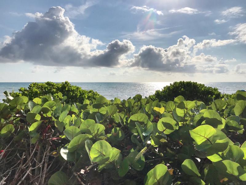 N1DC/4 Hutchinson Island, Florida, USA