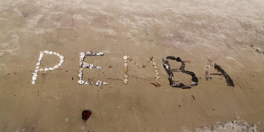 5H4WZ Pemba Island 7 February 2020 Image 3
