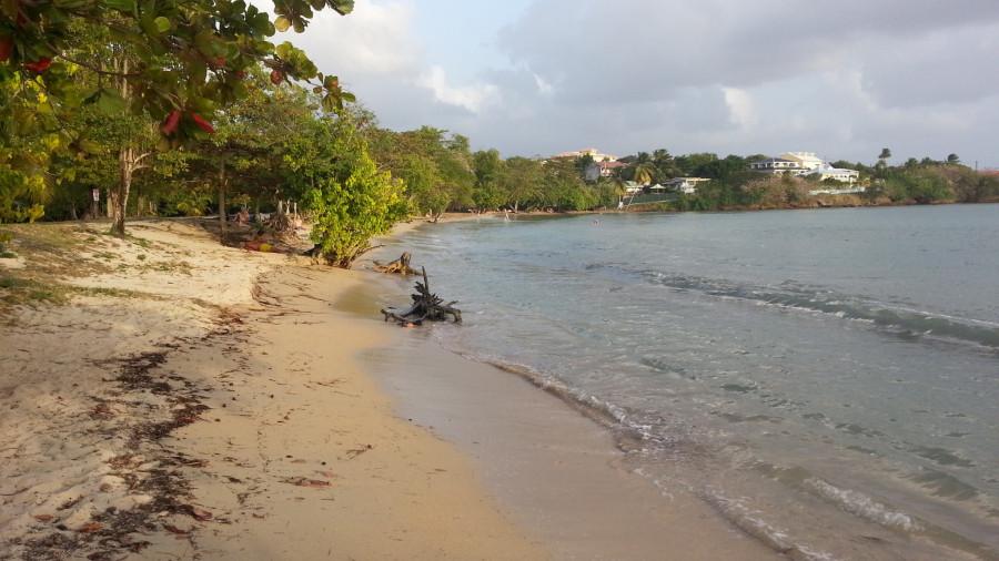 FM/VE3DZ Ducos, Martinique Island 11 February 2020 Image 2