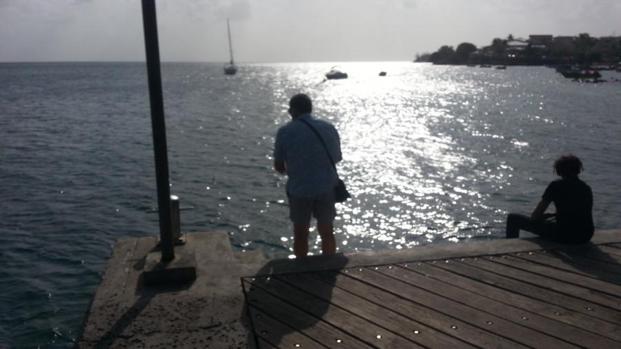 FM/VE3DZ Ducos, Martinique Island 11 February 2020 Image 7