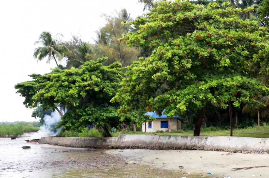 5H4WZ Pemba Island 13 February 2020 Image 21