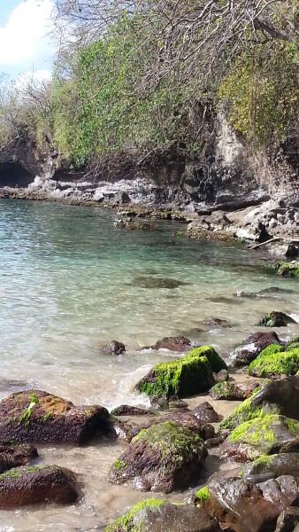 FM/VE3DZ Anse Noire Anse Arlet, Martinique Island 14 February 2020 Image 2