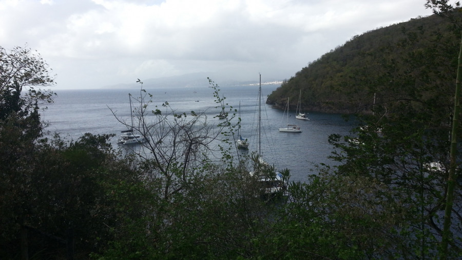 FM/VE3DZ Anse Noire, Martinique. Images 14 February 2020 Image 12