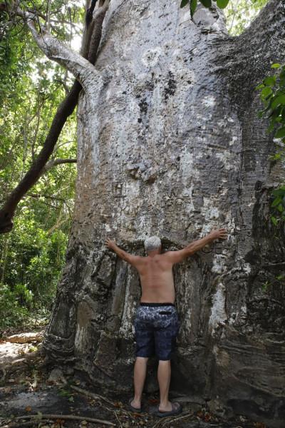 5H4WZ Masali Island Image 19