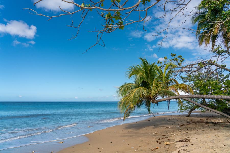 KP4/W2HUV Puerto Rico