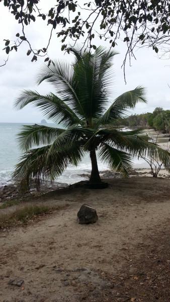 FM/VE3DZ Anse Mabouya, Martinique Island. Image 13