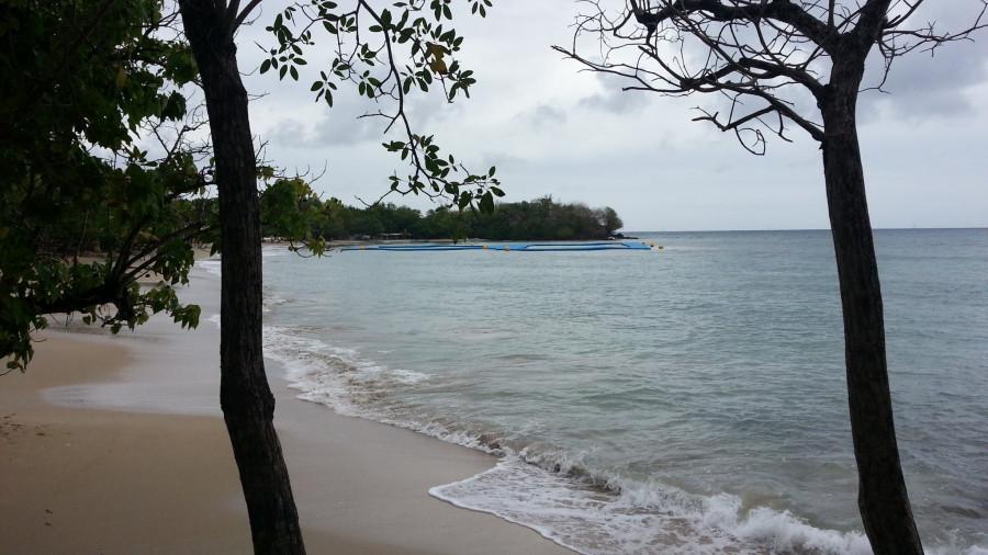 FM/VE3DZ Anse Mabouya, Martinique Island. Image 17