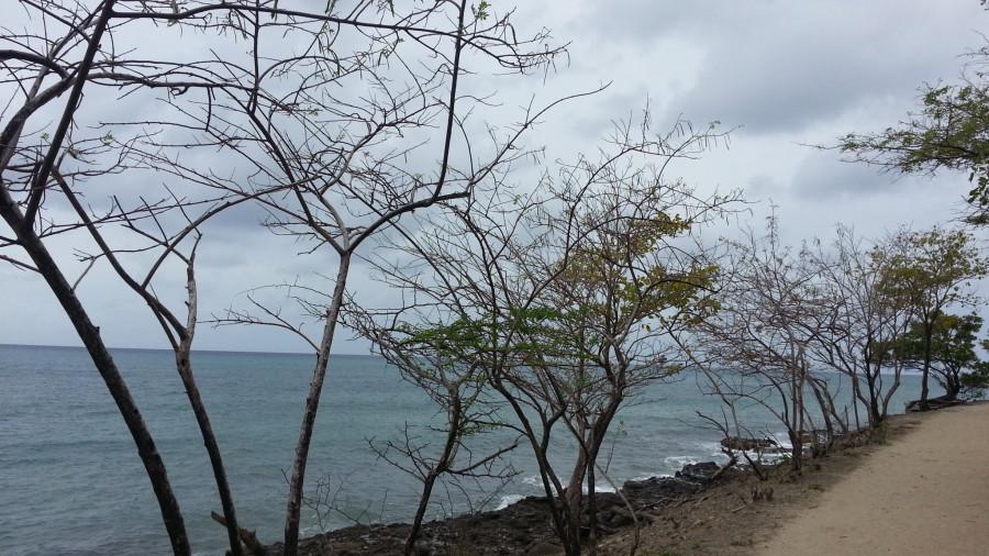 FM/VE3DZ Anse Mabouya, Martinique Island. Image 16
