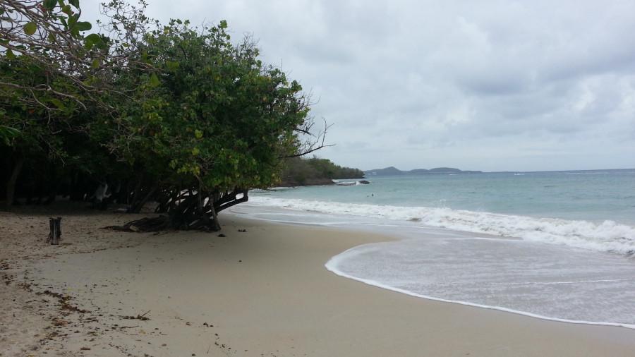 FM/VE3DZ Anse Mabouya, Martinique Island. Image 21