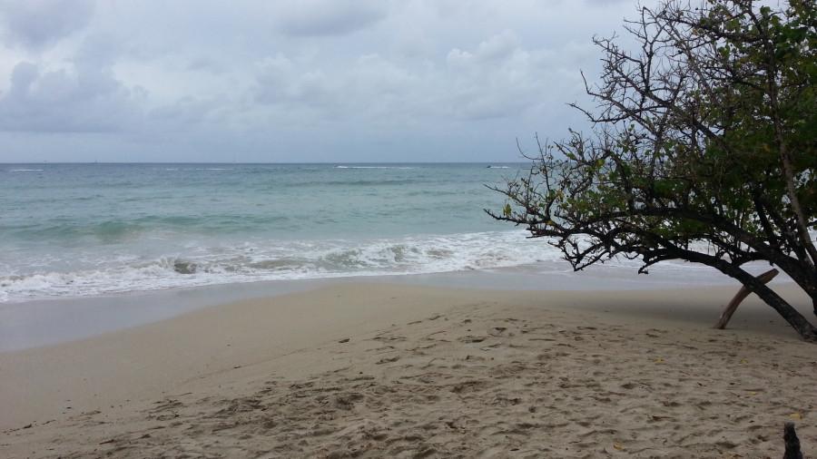 FM/VE3DZ Anse Mabouya, Martinique Island. Image 23