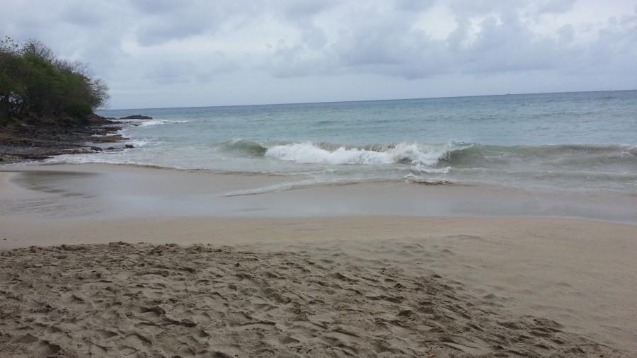 FM/VE3DZ Anse Mabouya, Martinique Island. Image 24