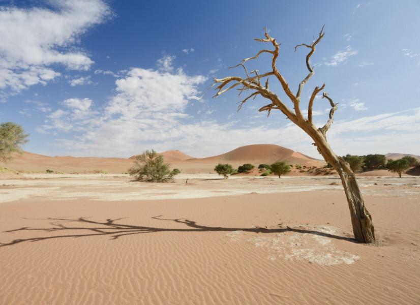 V5/KI4SVM Namibia