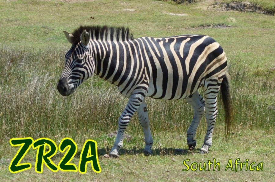 ZR2A South Africa QSL