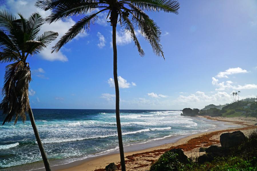 8P6PE Barbados Island