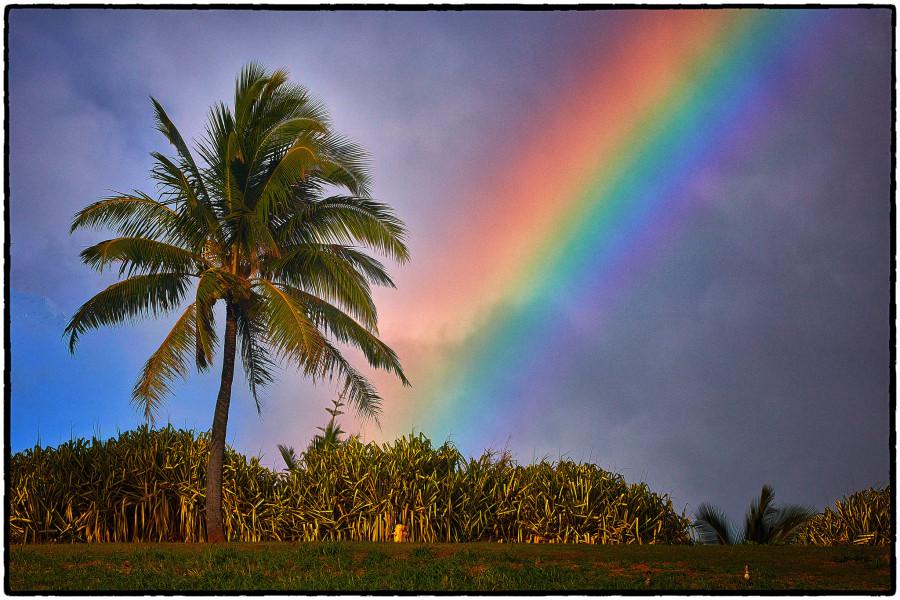 WA6QDQ/KH6 Rainbow, Kapaa, Kauai Island, Hawaii