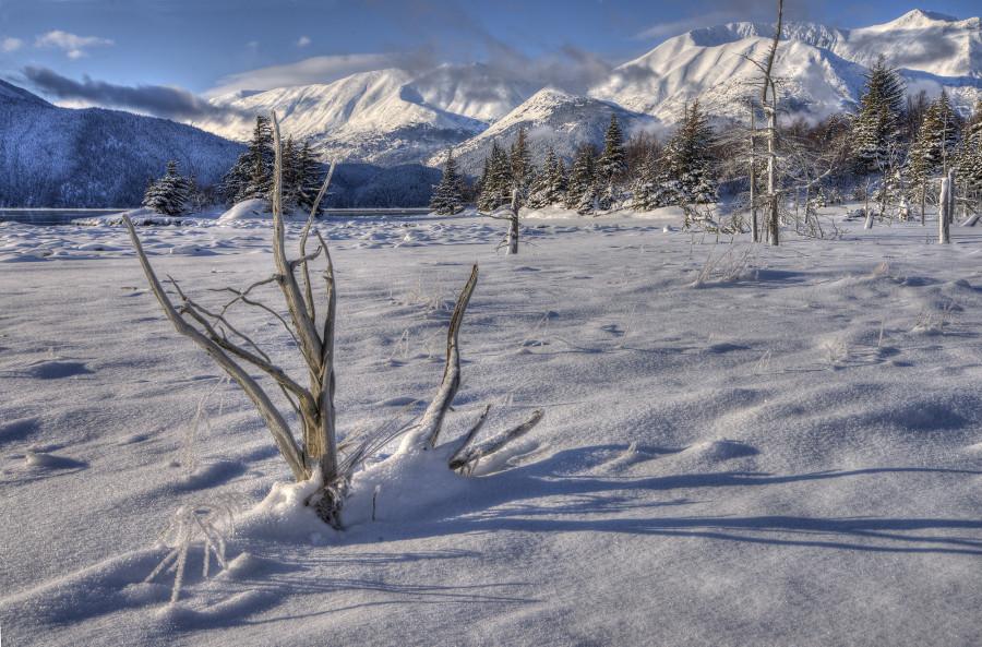 AL7NC Anchorage, Alaska