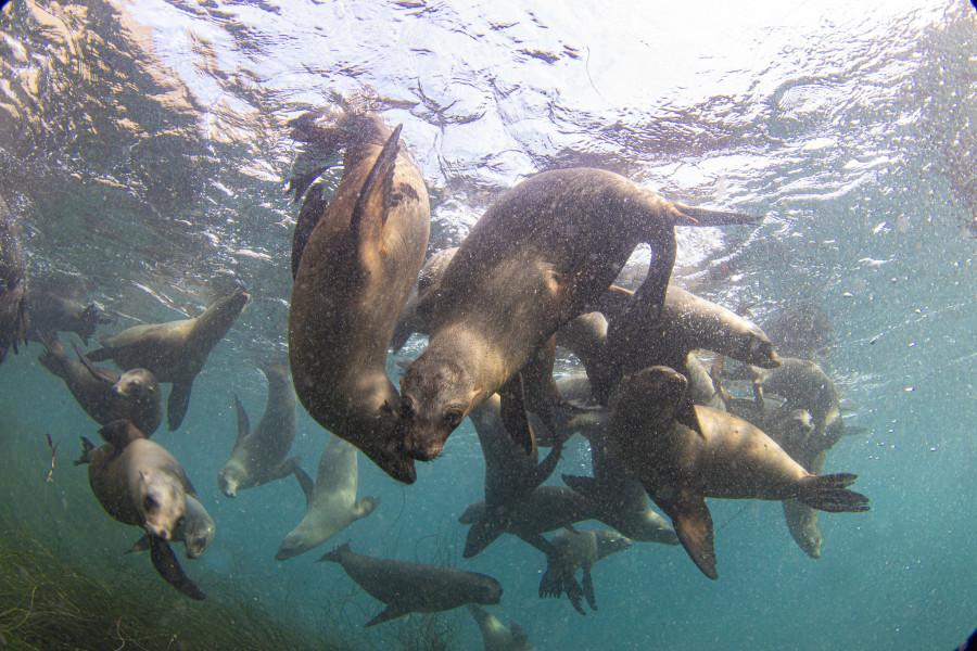 KD7WPJ Anacapa Island