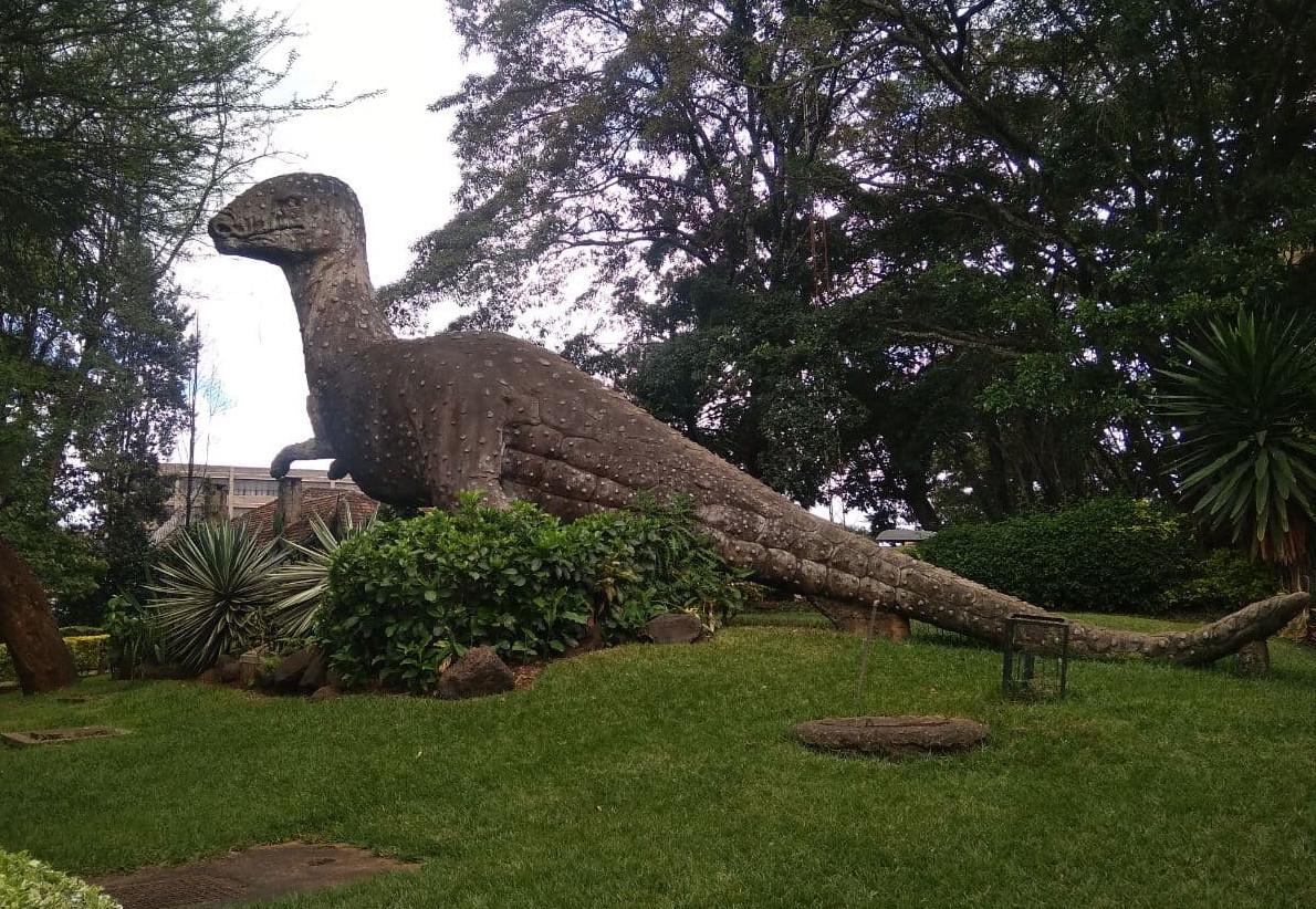 7Q7RU Nairobi, Kenya National Musem 9 November 2020 Image 21