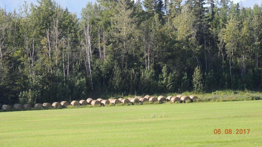 VE7ACN Anchorage Alaska Image 3