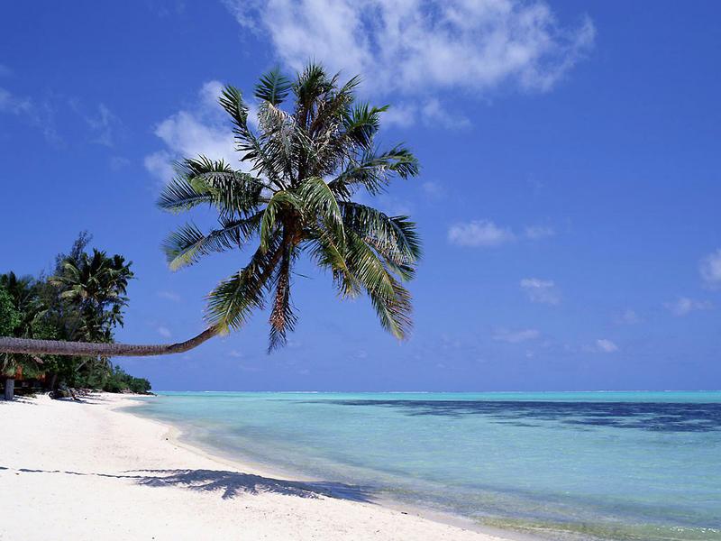 8Q7QC Maakeyolhu, Naifaru Island, Lhaviyani Atoll, Maldives