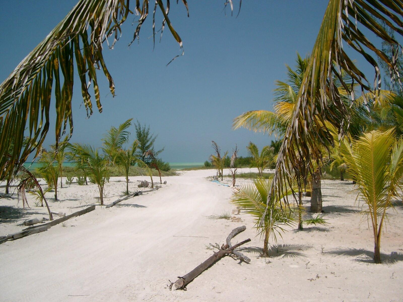 XF3/XE1B XF3/XE1JC Holbox Island, Mexico