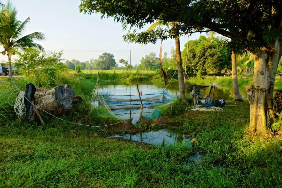HS3ANP Surin Thailand