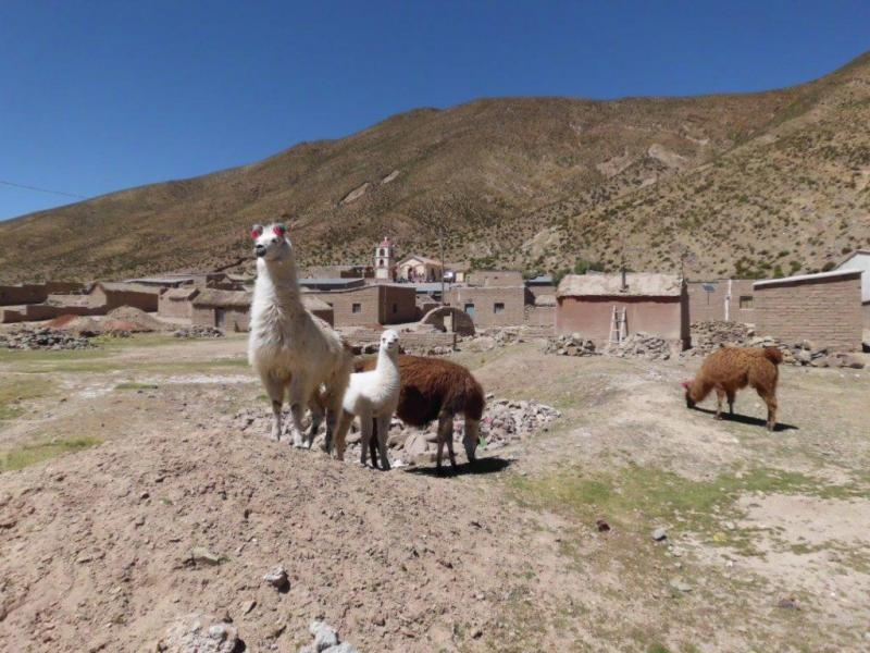 CP4BT The Andes village Rio San Pablo, Bolivia