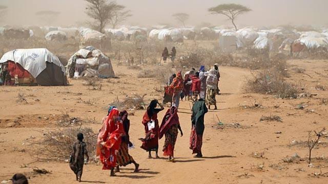 6O6O Somalia Picture 2