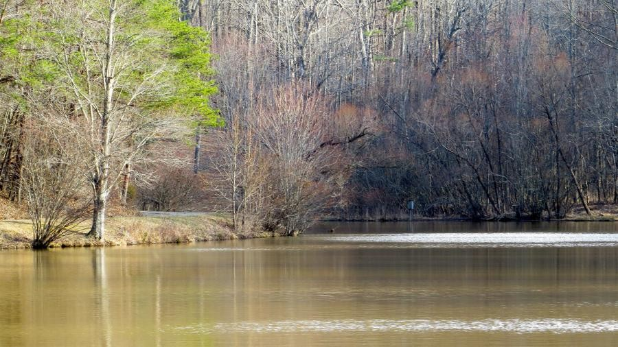 N4EX/P Haw River State Park